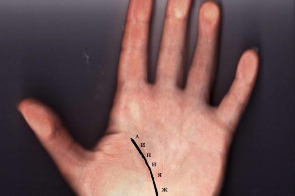 Линия жизни на руке3
