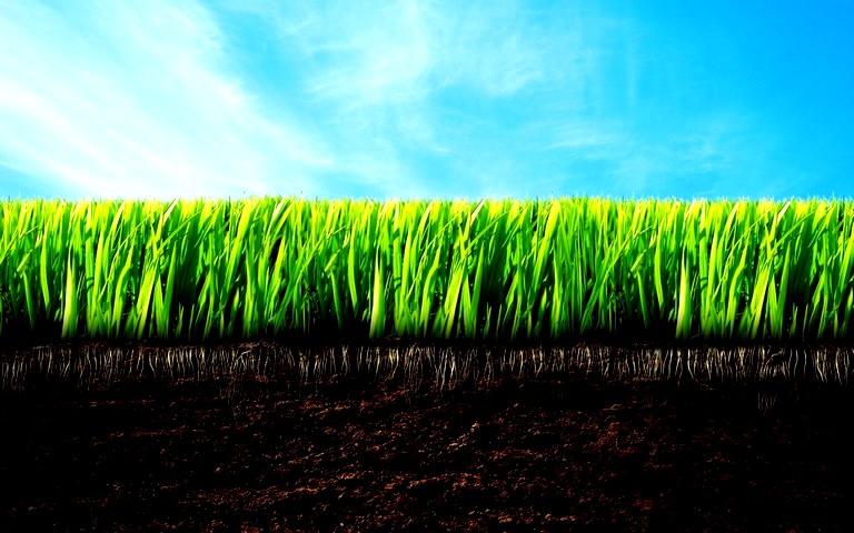 Преобразование почвы