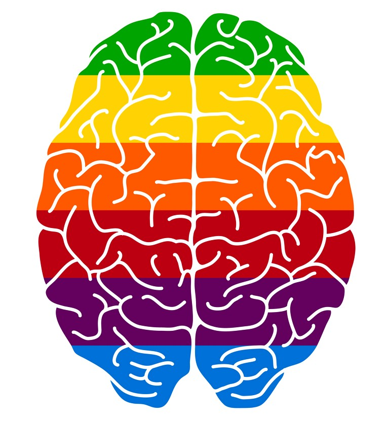 psychology 4 philosophy the branch of metaphysics that studies the soul, the mind, and the relationship of life and mind to the functions of the body.