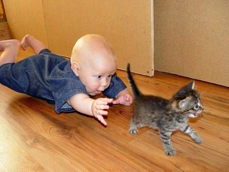 Животные и дети