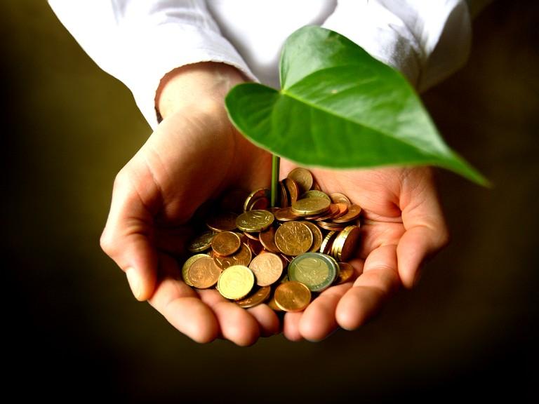Экономическая сфера (2)