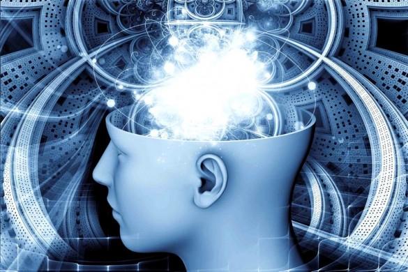 Принципы психологии (3)