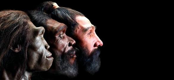 Происхождение человека (2)
